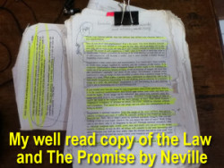 well-read-neville-goddard-book-the-law-and-the-promis